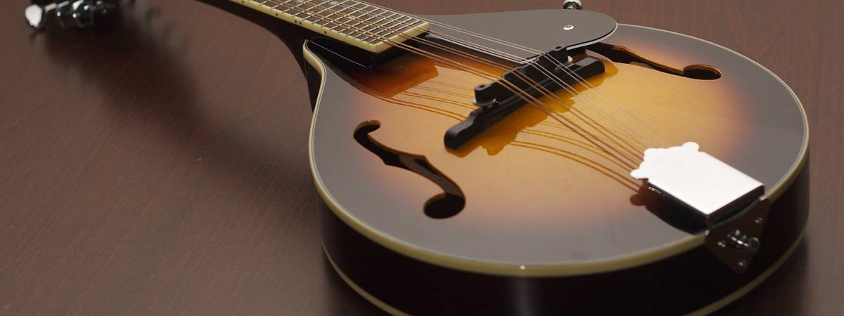 Are you going to buy a mandolin? Make sure you know every detail by reading this article!