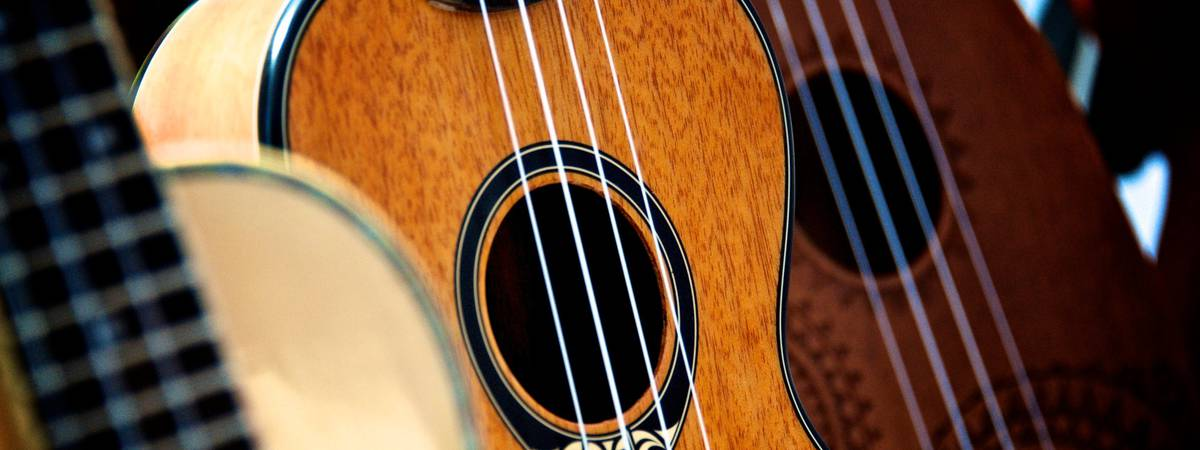 Interested in purchasing a ukulele? Here is where you should pay attention to